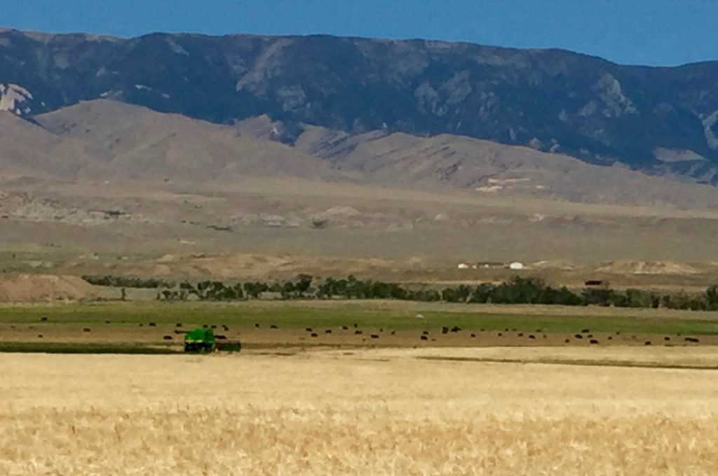 Pic of our Wyoming ranch, taken during my Wyoming book tour last summer 2016. The setting for my novel, Hardpan.